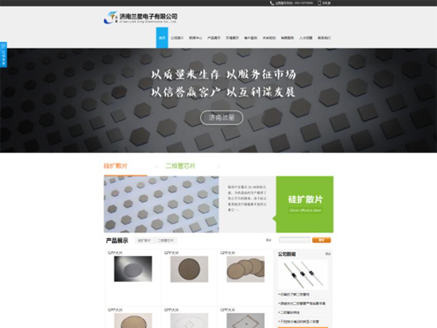 济南蓝星电子科技有限公司